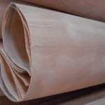 poplar--okoume--bintangor--birch--mahogany--mersawa-etc